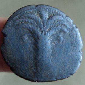 Varios AE Cartagineses 961124945