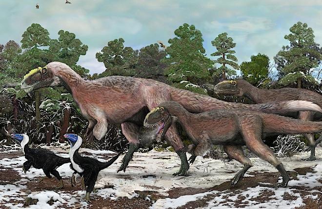 Titanosauros found Y_huali