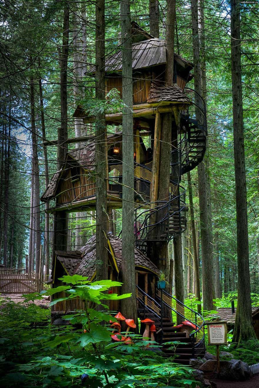 10 Fantastic Treehouse Homes That Will Blow Your Mind! BC-treehouse