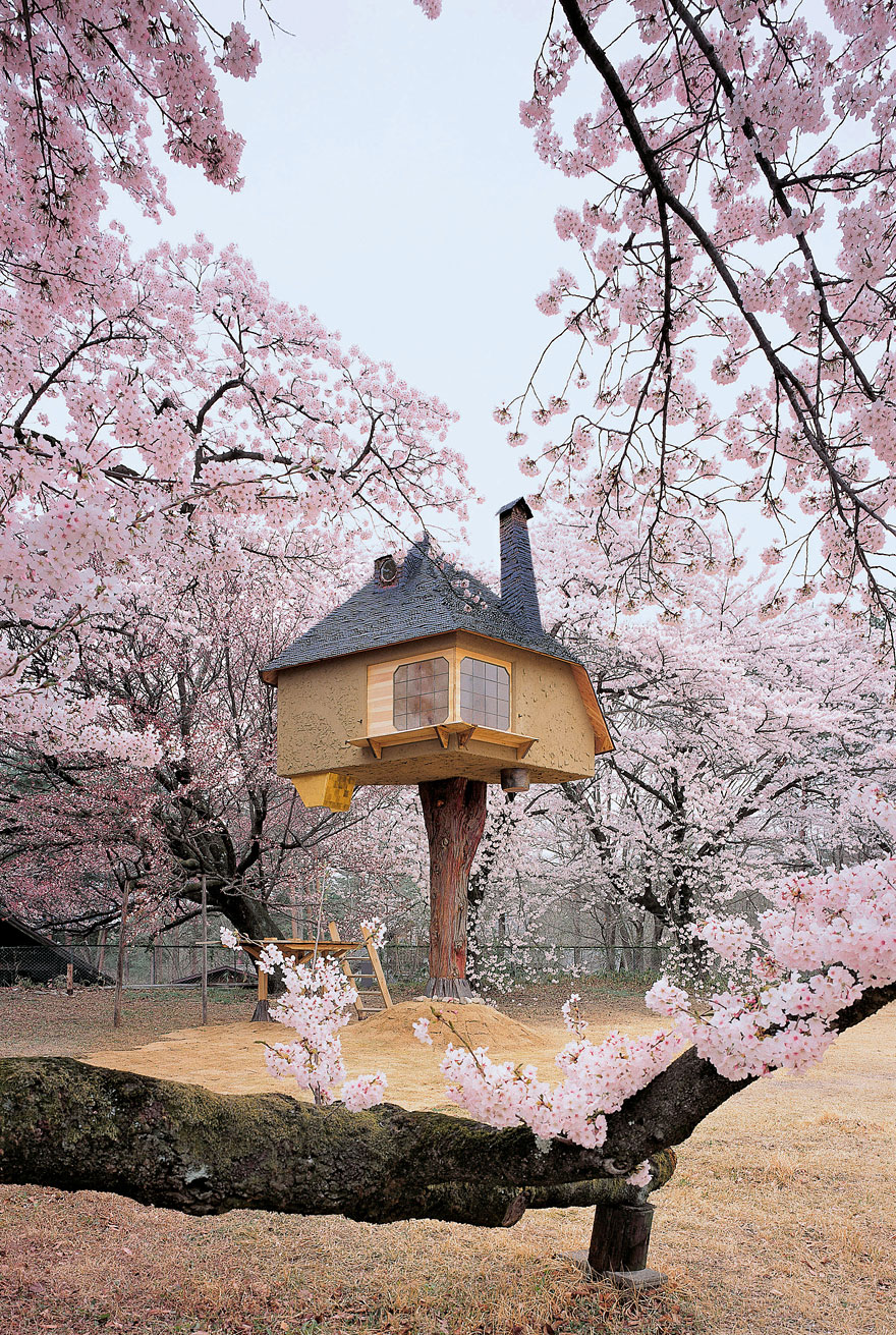 10 Fantastic Treehouse Homes That Will Blow Your Mind! Teahouse-treehouse1