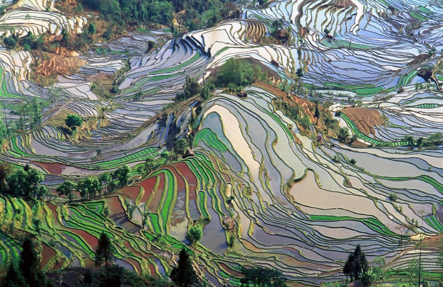 10 Places So Surreal They Could Be From Other Planets Rice-field-terraces-878x569
