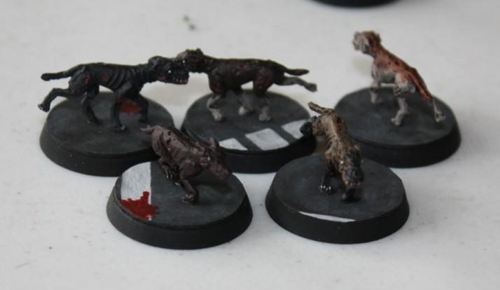 Spielberichte Hunde