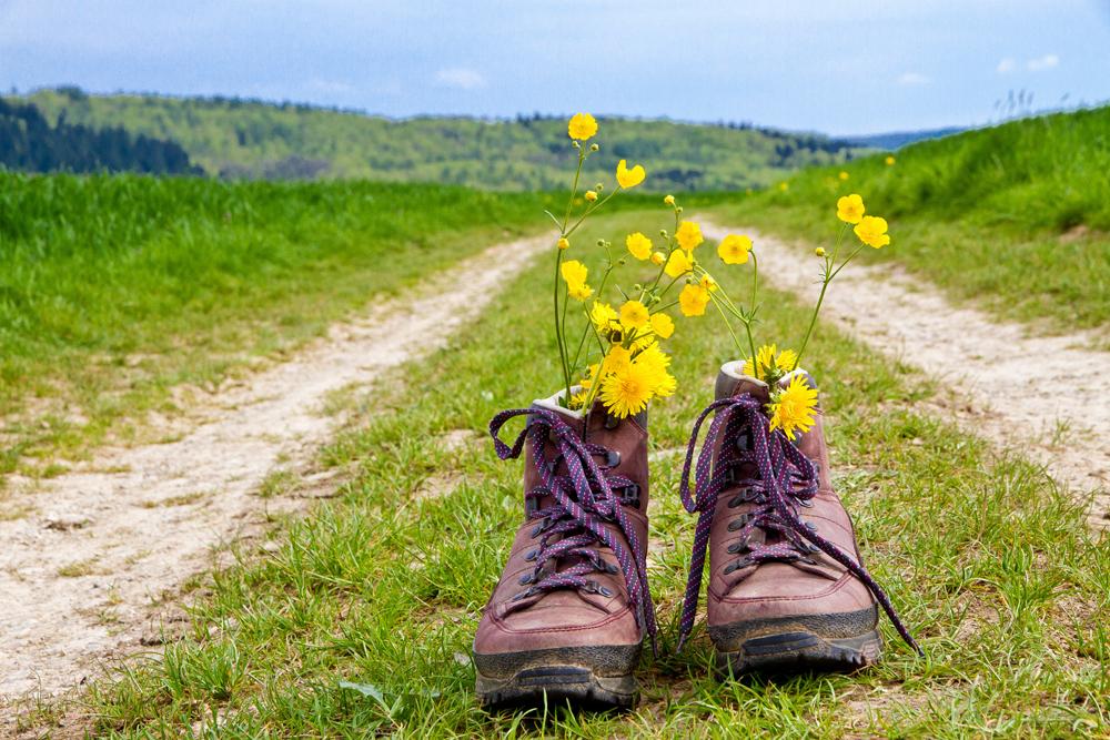 El camino. Botas_camino_xacotrans