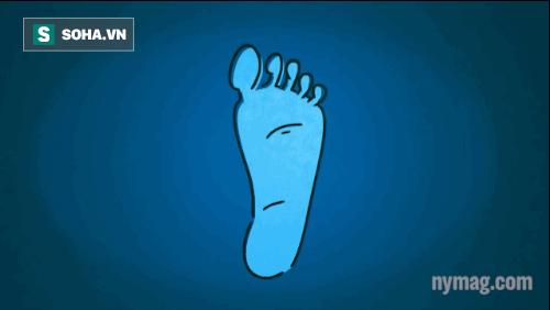Cách chữa mất ngủ vô cùng hiệu quả chính bạn cũng không ngờ Photo-3-1481426499882.png