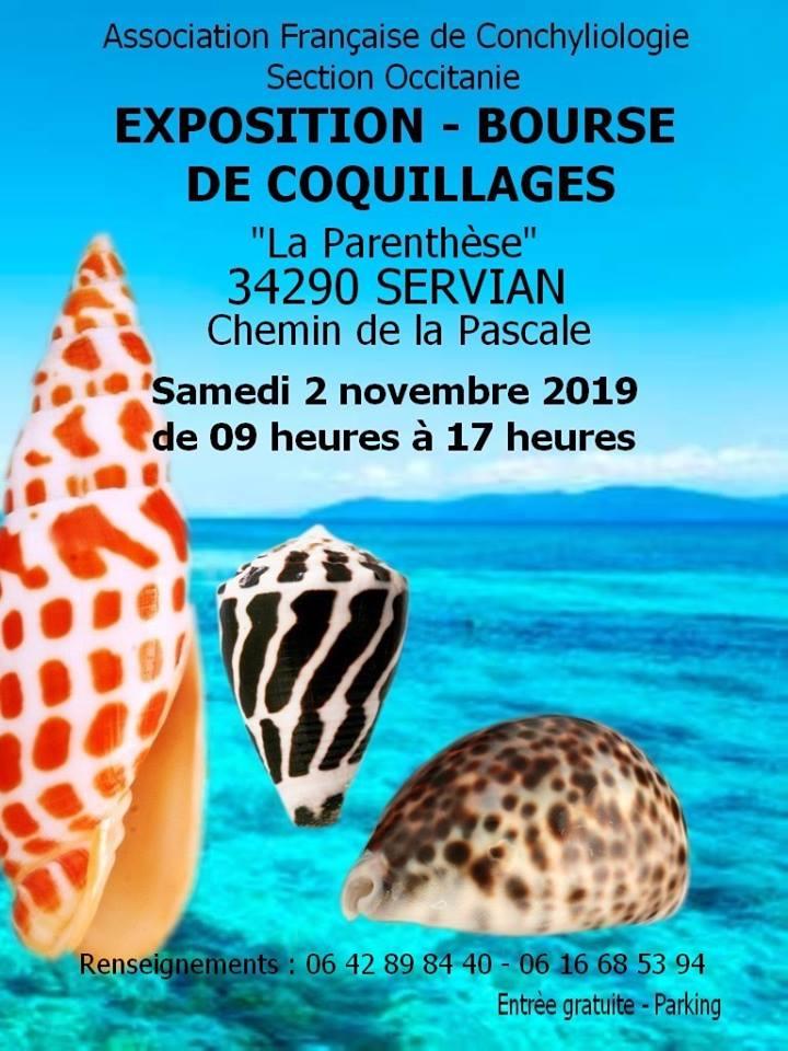 Bourse d'Occitanie - Servian - 02 Novembre 2019 Servian%2002-11-2019