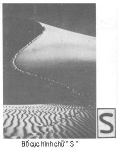 Đường nét trong bố cục ảnh P0905a