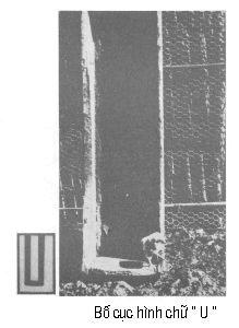 Đường nét trong bố cục ảnh P0906a