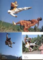 monaci shaolin Shaolin-monks