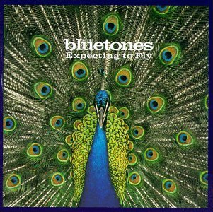 ...Y luego se los tragó la tierra. Bluetones-expecting-to-fly