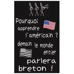 Stylos plume - Page 15 Magnet-pourquoi-apprendre-l-americain-demain-le-monde-entier-parlera-breton