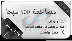 شركة يور سيرف لتكنولوجيا المعلومات 500-mb