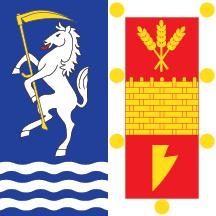Teritorijalna veksilologija i heraldika Srbije Backa-palanka-zastava-heraldicki-steg