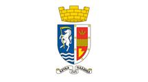 Teritorijalna veksilologija i heraldika Srbije Backa-palanka-zastava