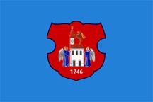 Teritorijalna veksilologija i heraldika Srbije Indjija-zastava-2008