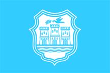 Teritorijalna veksilologija i heraldika Srbije Novi-sad-zastava
