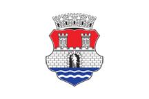 Teritorijalna veksilologija i heraldika Srbije Pancevo-zastava