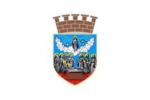 Teritorijalna veksilologija i heraldika Srbije Zrenjanin-zastava