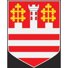 Teritorijalna veksilologija i heraldika Srbije Stari-grad-grb
