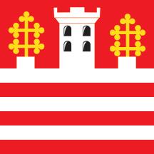 Teritorijalna veksilologija i heraldika Srbije Stari-grad-zastava