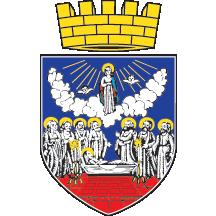 Teritorijalna veksilologija i heraldika Srbije Zrenjanin-grb-srednji