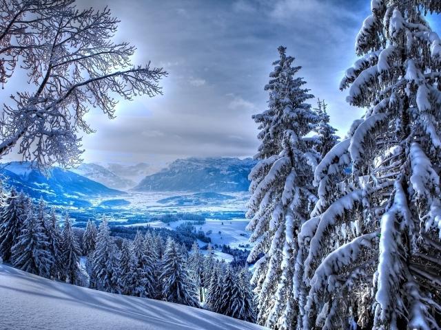 Обои для рабочего стола - природа Winter_Winter_in_mountains_037250_29