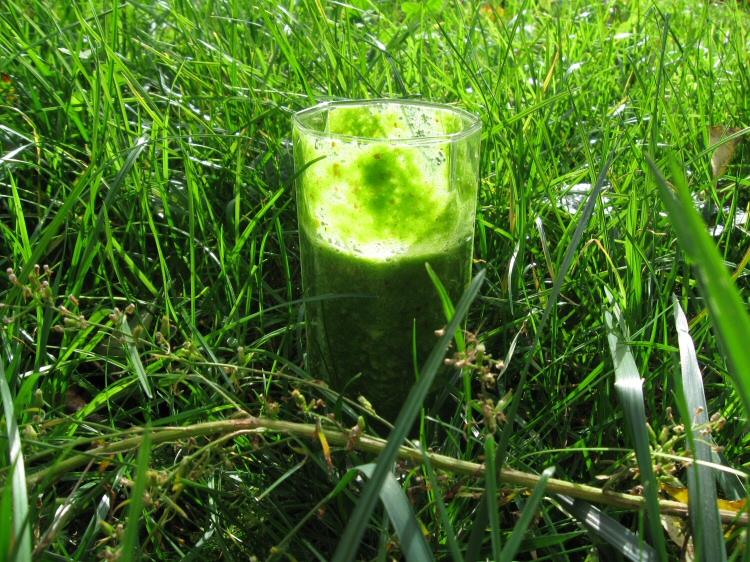 Volim zeleno - Page 2 Zeleno3