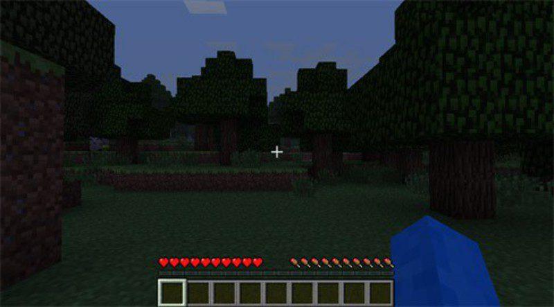 Minecraft, un mundo de aventuras. [Explicación] 3