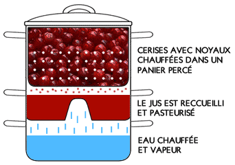 [Cuisine] Extracteur de jus à vapeur Extracteur-jus-vapeur