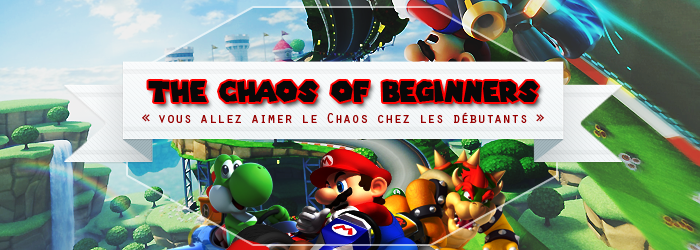 The Chaos Of Beginner