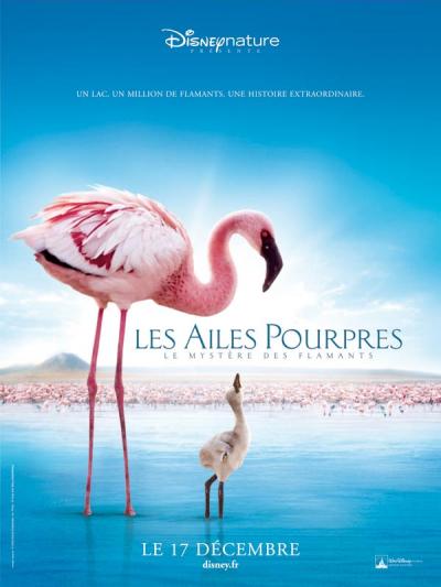 [Disneynature] Les Ailes Pourpres : Le Mystère des Flamants (2008) 2008-pourpres-1