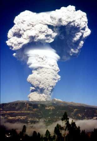 Vulkani - Page 2 Mushrom