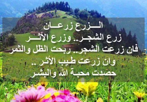 إثنان في إثنان / سعاد عثمان - صفحة 2 575572839