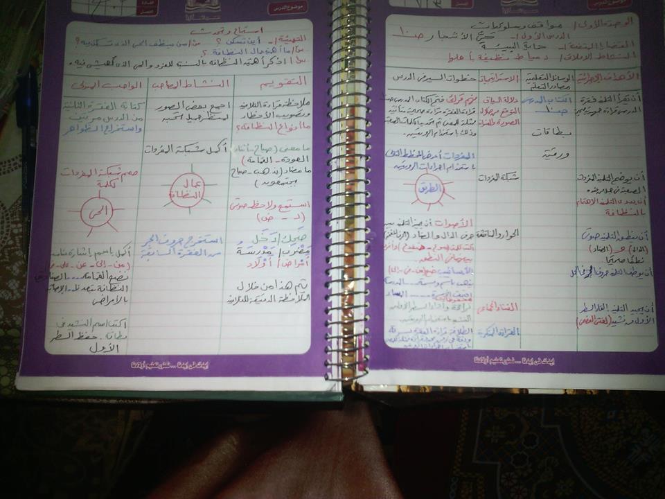 نموذج تحضير للثالث الإبتدائى عربى من دفتر معلمة ( ترم أول2016) 147022670
