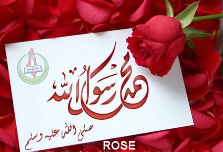 ابدأ يومك بذكر آية قرآنية ثم الصلاة على الحبيب المصطفى محمد  صلى الله عليه وسلم  -2- - صفحة 6 402460162