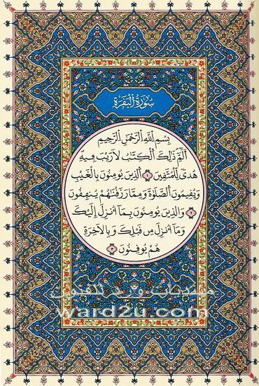 صور عثمان طه الذي كتب المصحف الشريف 886700457
