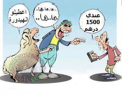 كبش العيد !!!!!!! 444590393