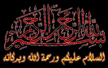 كتاب مذكرات أخطر جاسوسه عربيه للموساد أمينه المفتى 555920431