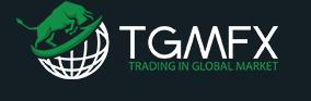 ادخل عالم الاستثمار عن طريق Tgmfx 488176816