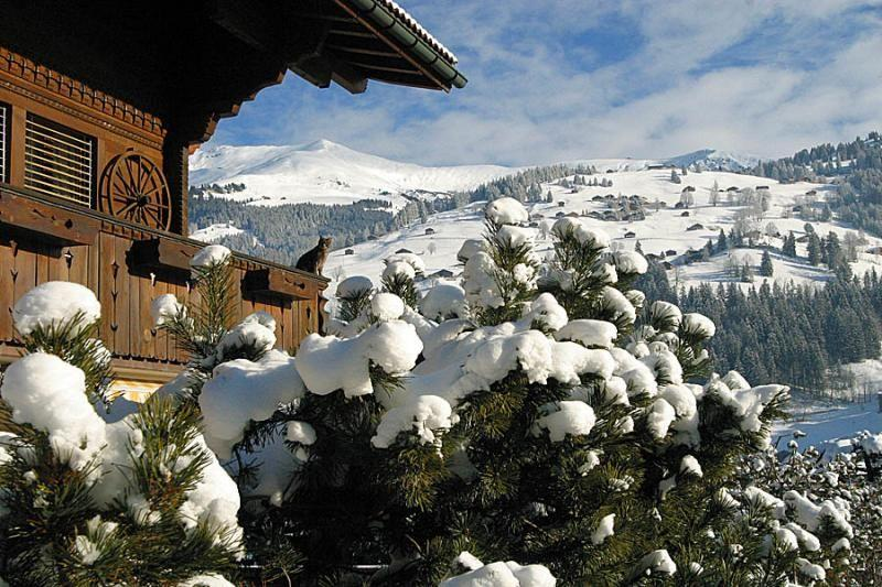 سويسرا والثلج روعة....... 600020751