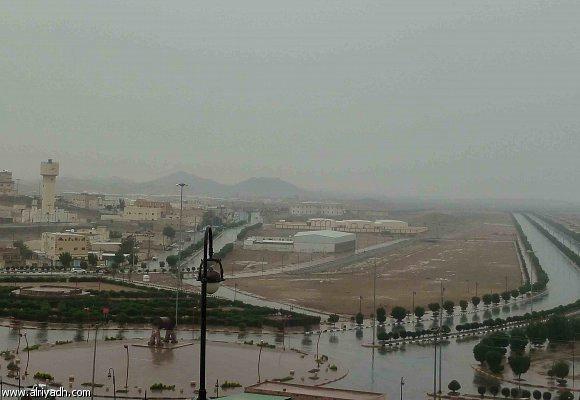 احجار الذهب في محافظة مهد الذهب