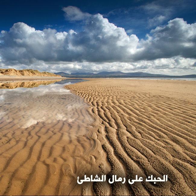 كلمة قرآنية تشهد بصدق القرآن  360524649