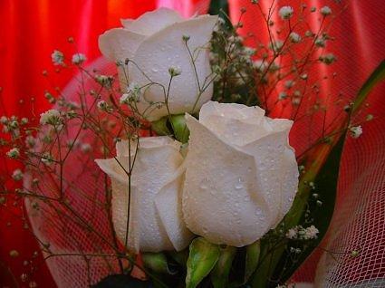 بمناسبة قرب حلول عيد القيامة كل عام وانتم  بخير 267629767