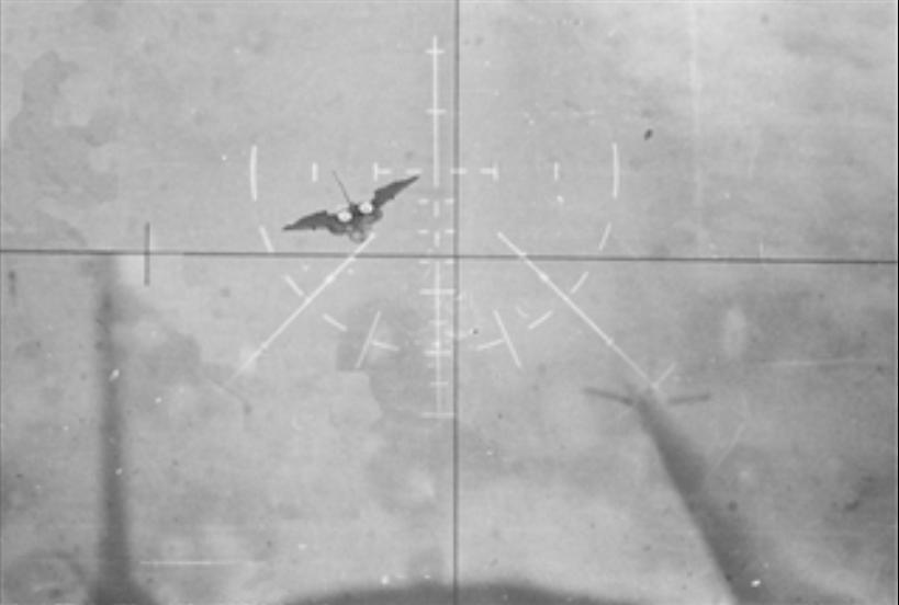انجازات المقاتلات الروسية ضد المقاتلات الغربية في الحروب متجدد باذن الله 159045815
