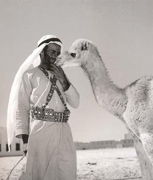 الله يرحم ذيك الأيام...صور من التراث. 757581604