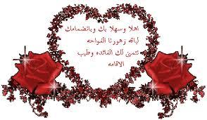 «بورت غالب» معجزة على أرض مصرية 567774735