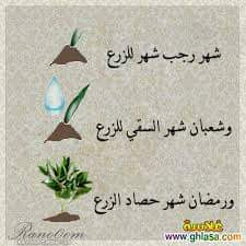 مسابقة محبة القرآن الكريم 1437هجرية  - صفحة 2 235588139