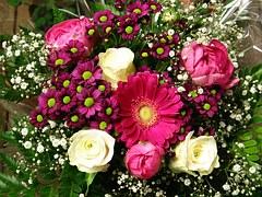 Unsere Forengeburtstage - Seite 7 Bouquet