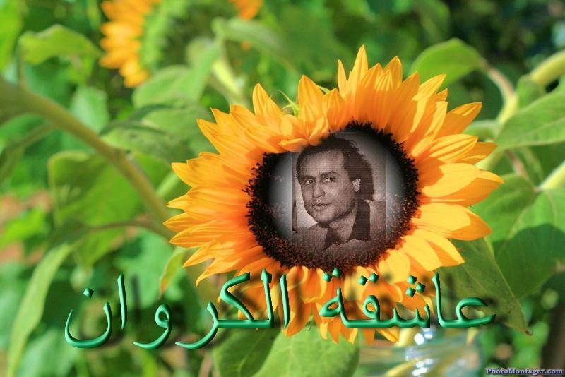 مكتبة صور وتصميمات  الكروان عماد عبد الحليم متجدد يوميا - صفحة 3 120209607
