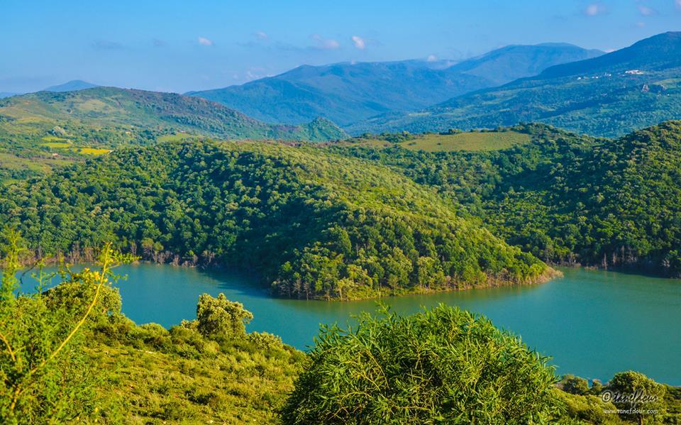موسوعة شاملة عن المحميات الطبيعية - حصريا على منتدى واحة الإسلام - صفحة 2 733225081