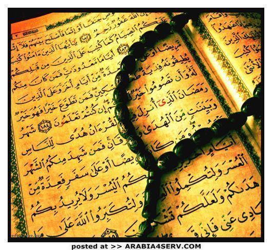 حصريا على منتدى واحة الإسلام - صور رمزية روووعة 231381222